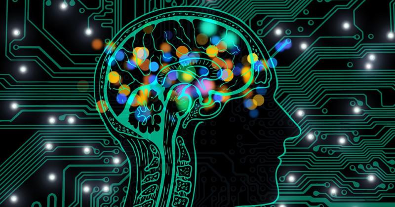 Gehirn und Chips im Hintergrund