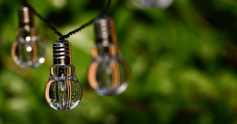 Glühbirne auf grünem Hintergrund