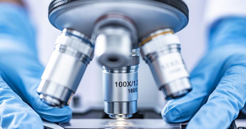 Mikroskop und Objektträger