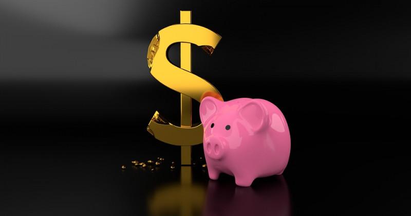 Sparschwein und abgenagter Dollar