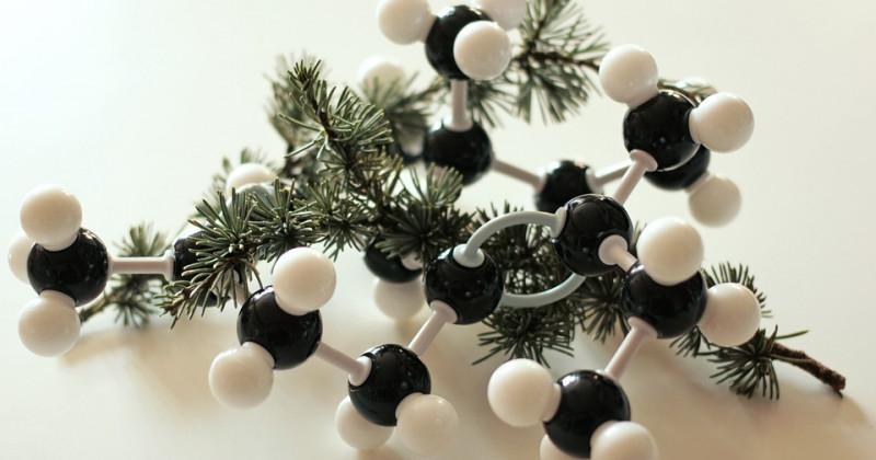 Struktur des Wasserstoffmoleküls mit Baumästen