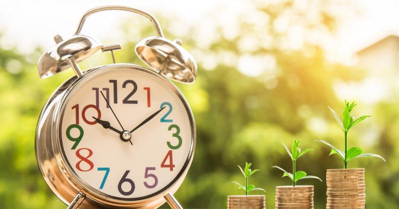 Uhr Münzen Pflanzen