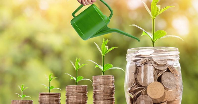 Wachsende Ersparnisse
