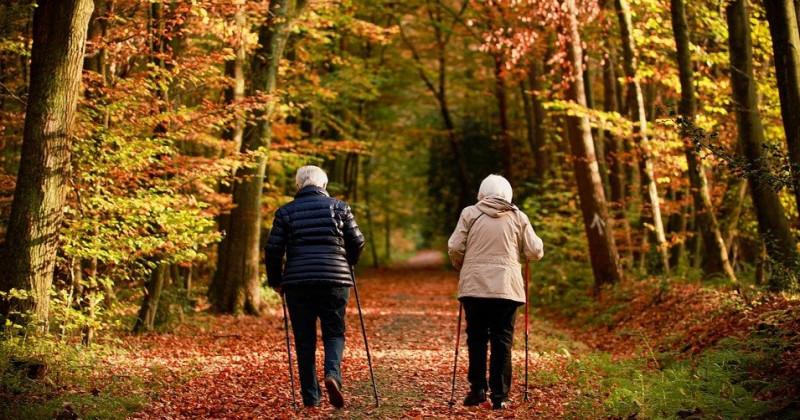 Zwei alte Damen gehen im Wald spazieren